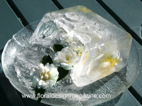 fowers in ice, will they freeze and go brown?