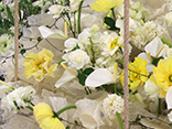 download the latest edition, extraordinary flower arranging lessons