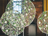 Make large circles for floral art
