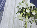 Wedding bouquets from the past:  See what the brides  chose as their style from 1904 right up to 1989 in this unique exhibition of wedding bouquets of the last century./