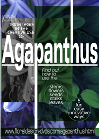 Discover the magic in all parts of the Agapanthus and how you can use it to replace floral foam in all your floral arrangements. It is all only a click away!