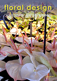 If you are after Anthurium arrangement ideas, this is the edition of floral design magazine for you.