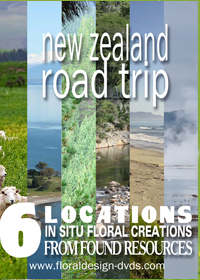 Take a New Zealand road trip and explore new flower arranging ideas using only what is avalable free in Nature. It is all only a click away!